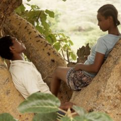 Fig Trees, coming of age en guerre civile éthiopienne